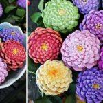 Květiny ze šišek