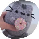 Pushees a donut z ponožky